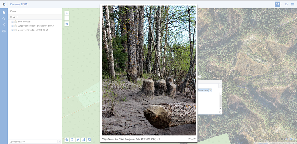 ../../_images/webmap_identification_photo_lightbox_rus.png